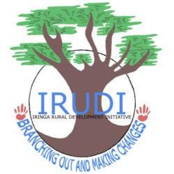 IRUDI logo