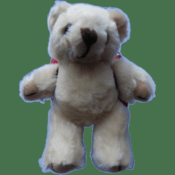 Camon Bear