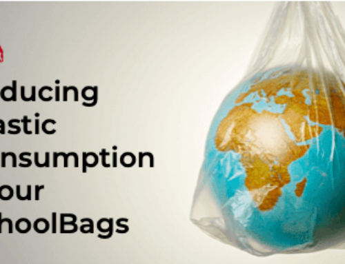 No. 47: Reducing Plastic Consumption In Our SchoolBags